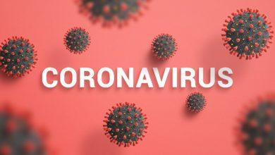 Photo of 1.041 Kasus Baru Virus Corona di Indonesia, Bali Sumbang 81
