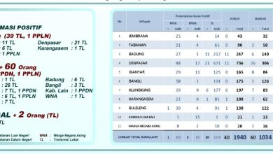 Photo of 161.526 Rapid Tes dan 34.974 Swab Telah Dilakukan di Bali