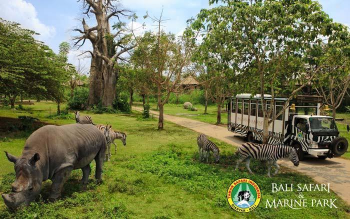 Photo of Kesiapan Pembukaan Bali Safari and Marine Park Dicek