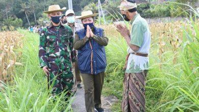 Photo of Apresiasi Warga Kembali ke Sawah, Mas Sumatri Puji Terobosan Petani Muda Keren