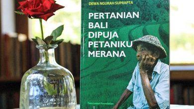 Photo of -12,28%, Pertumbuhan Ekonomi Bali Terendah di Indonesia