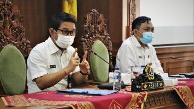 Photo of Pilkades Serentak, Adi Arnawa Tekankan Kampanye Virtual