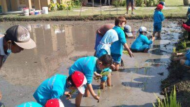 Photo of Teba Majalangu, Sarana Edukasi Anak di Tengah Kota
